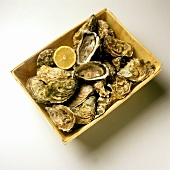 A Wooden Box of Oysters; Lemon Slice