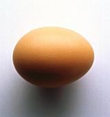 Single Whole Brown Egg