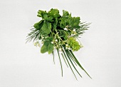 Small Herb Bouquet From Assorted Herbs