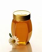 A Glass Jar Full of Honey; Daisy