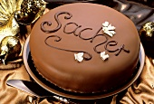 "Sacher torte with the word ""Sacher"" in chocolate"