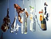 Edle Getränke & Meeresfrüchte hängen an Schnüren