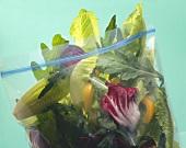 Frische Salatblätter & Paprikastücke in Plasiktüte verpackt