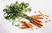 A Bundle of Fresh Carrots; Peeled Carrots