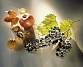 Apple; Walnuts; Grapes and Leaves