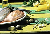 Whole Fresh Fish on a Plate; Clams and Garlic Cloves