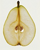 Cross Section of Pear