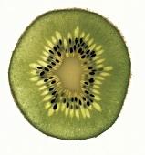 Slice of Fresh Kiwi