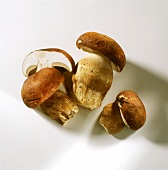 Three Ceps; One Sliced in Half