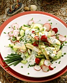 Cheese salad with cucumber, radishes & chive dressing
