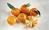 Fünf ganze & eine geschälte Mandarine (Tangerine)