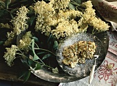 Deep-fried elderflowers on plate & fresh elderflowers