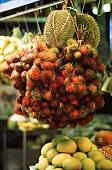 Exotic fruit (lychees, durian, mangos etc.) at a market