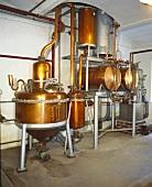 New schnapps distillery (Schnapps Museum, Mittendorfer, Austria)