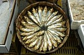Market stall with smoked sardines in vat (Spain)