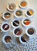 Verschiedene Hülsenfrüchte auf weißen Tellern & Löffeln