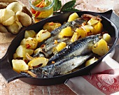 Mackerel with potatoes in a dish