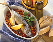 Mackerel on spicy tomato and pepper sauce in a dish