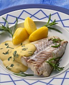 Coley fillet with potatoes & hollandaise sauce