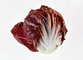 Large Head of Radicchio