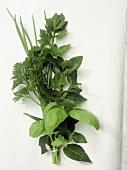 Small bouquet of herbs