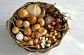 Several Bulb Vegetables in a Basket