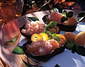 Three Servings of Campari Sorbet with Kumquats