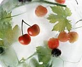 Kirschen & Weinblätter in Eis gefroren