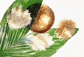Assorted Rice on a Leaf
