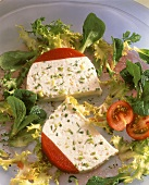 Trout quark terrine with tomato jelly on salad leaves