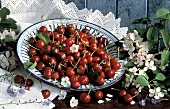 Fresh Red Cherries in Bowl; Cherry Blossoms