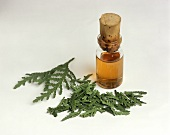 Needles and extract from tree of life (homoeopathic remedy)