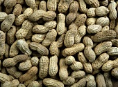 An Assortment of Peanuts