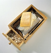 Wooden Cheese Grater with Parmesan