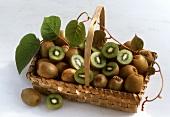 A Basket Full of Kiwi Fruit