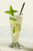 Mojito in tall glass with bar spoon