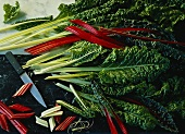 Red and green stalked chard on marble background