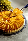 Peach tart, a piece cut, one piece on cake slice