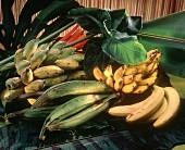 Banana Still Life
