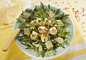 Mozzarella salad with rocket, cress, Parmesan, red pepper