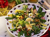Mixed salad leaves with radishes, eggs & daisies