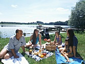 Family picnic in a meadow by a lake