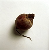 A Single Red Beet