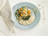 Sprout salad with mandarin oranges, cress and sliced tofu