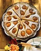 Elegant sunken apricot cake