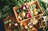 Swedes and turnips in a wooden basket and on a board