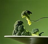 Piece of Broccoli on a Fork