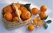 Clementines in a basket with a handle & beside it, one peeled