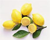 Fresh Lemons; One Cut in Half
