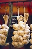 Garlic Braids Hanging in a Market
